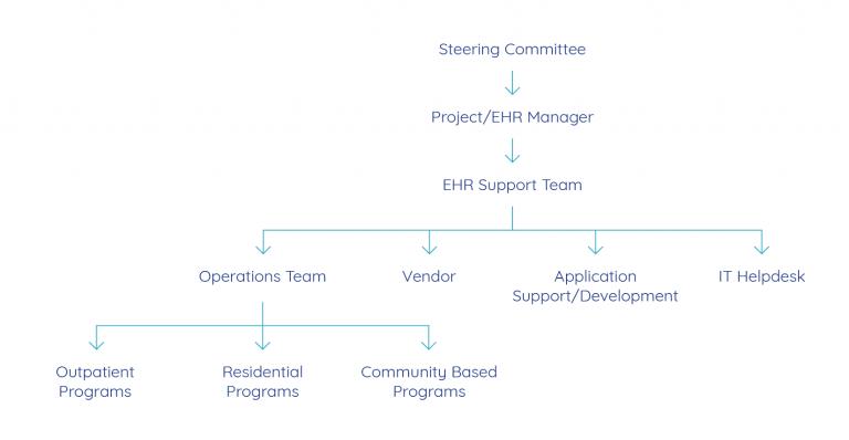 ehr governance model